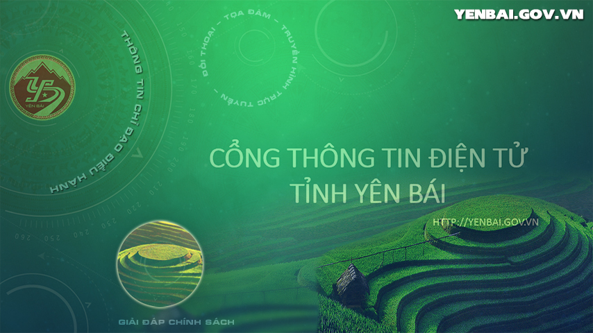 Tran Yen concentrates on planning of commodity agro-forestry production areas